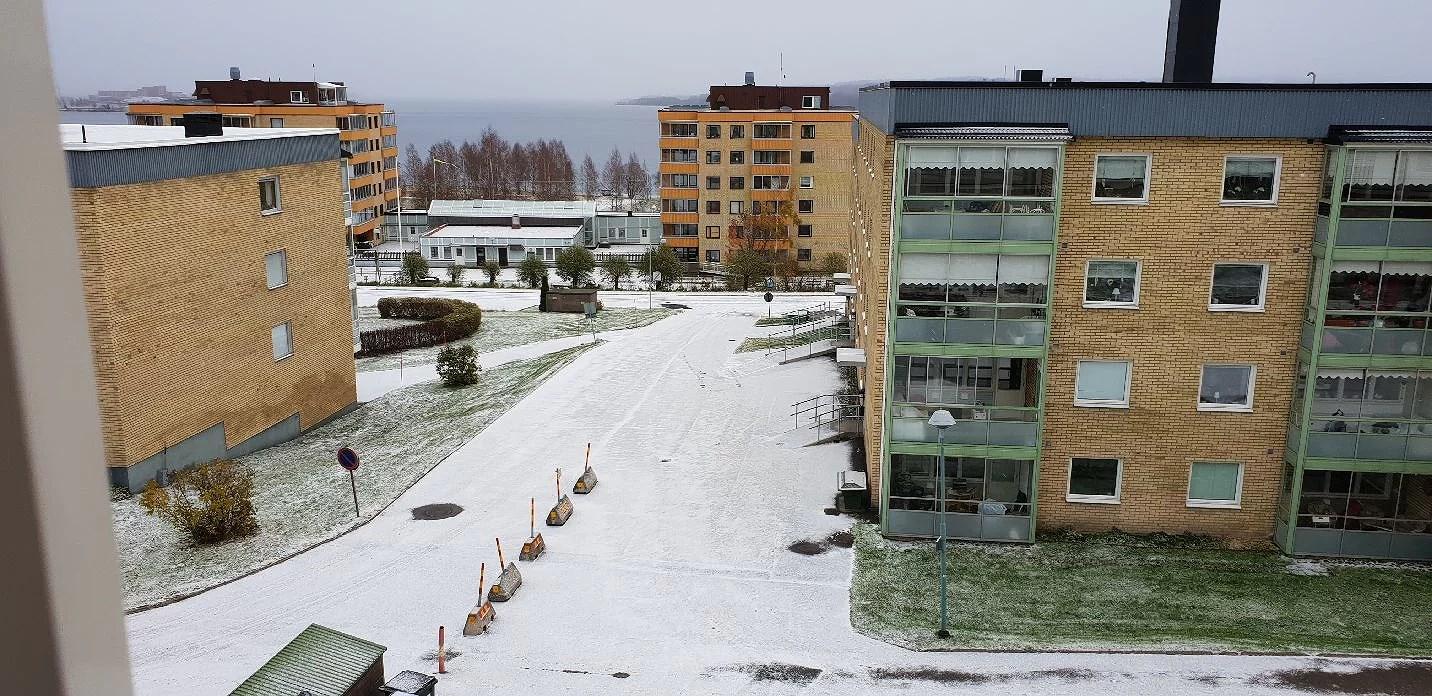 Årets första snö ❄🌨