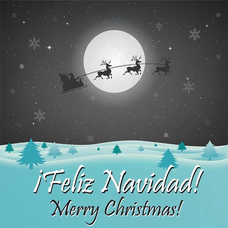 ¡Feliz Navidad! / Merry Christmas!