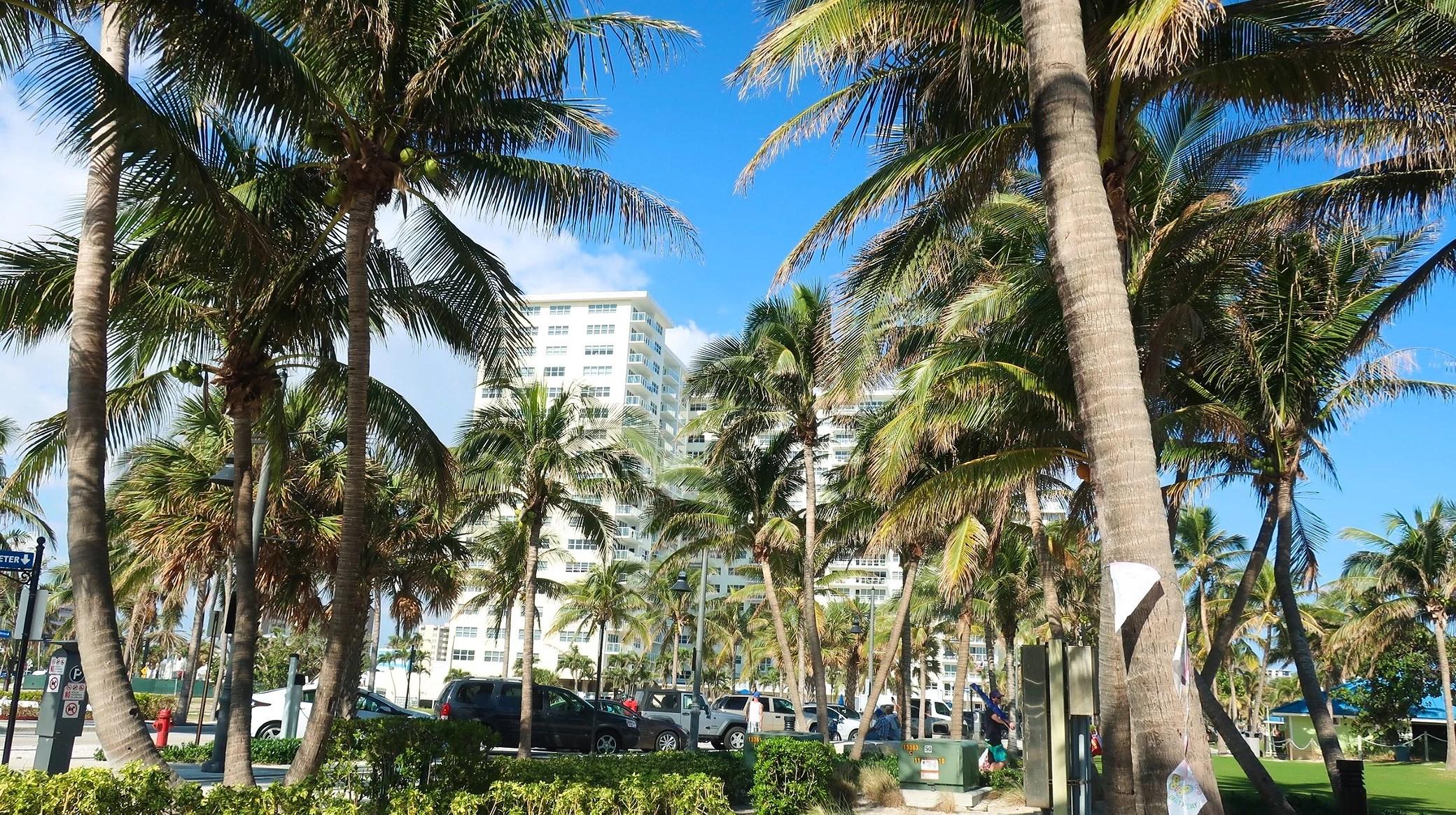 TOUCHDOWN FLORIDA