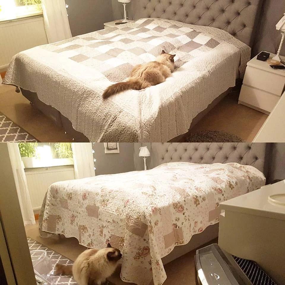 Sängöverkast från Halens.
