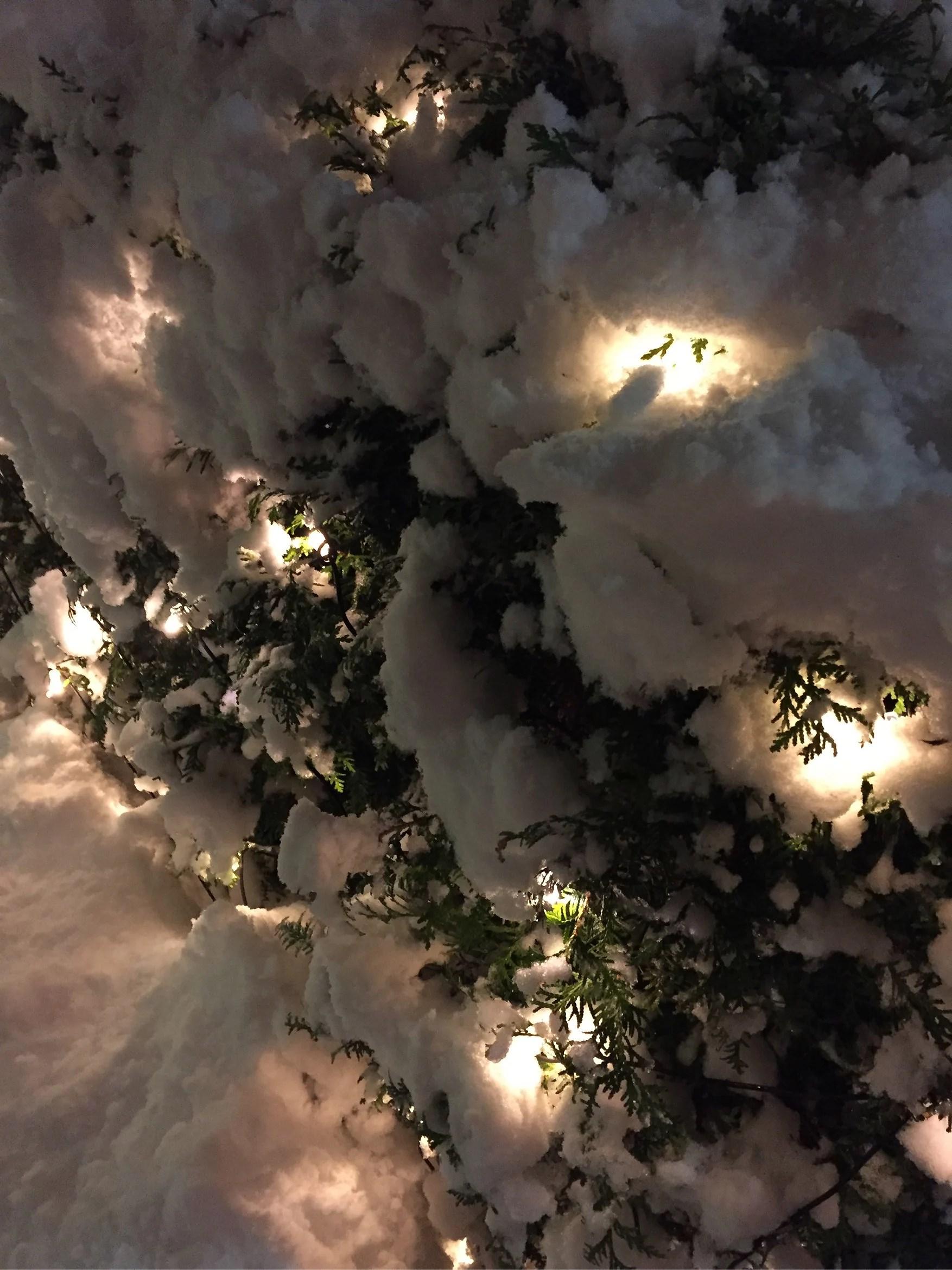 Snöpromenad