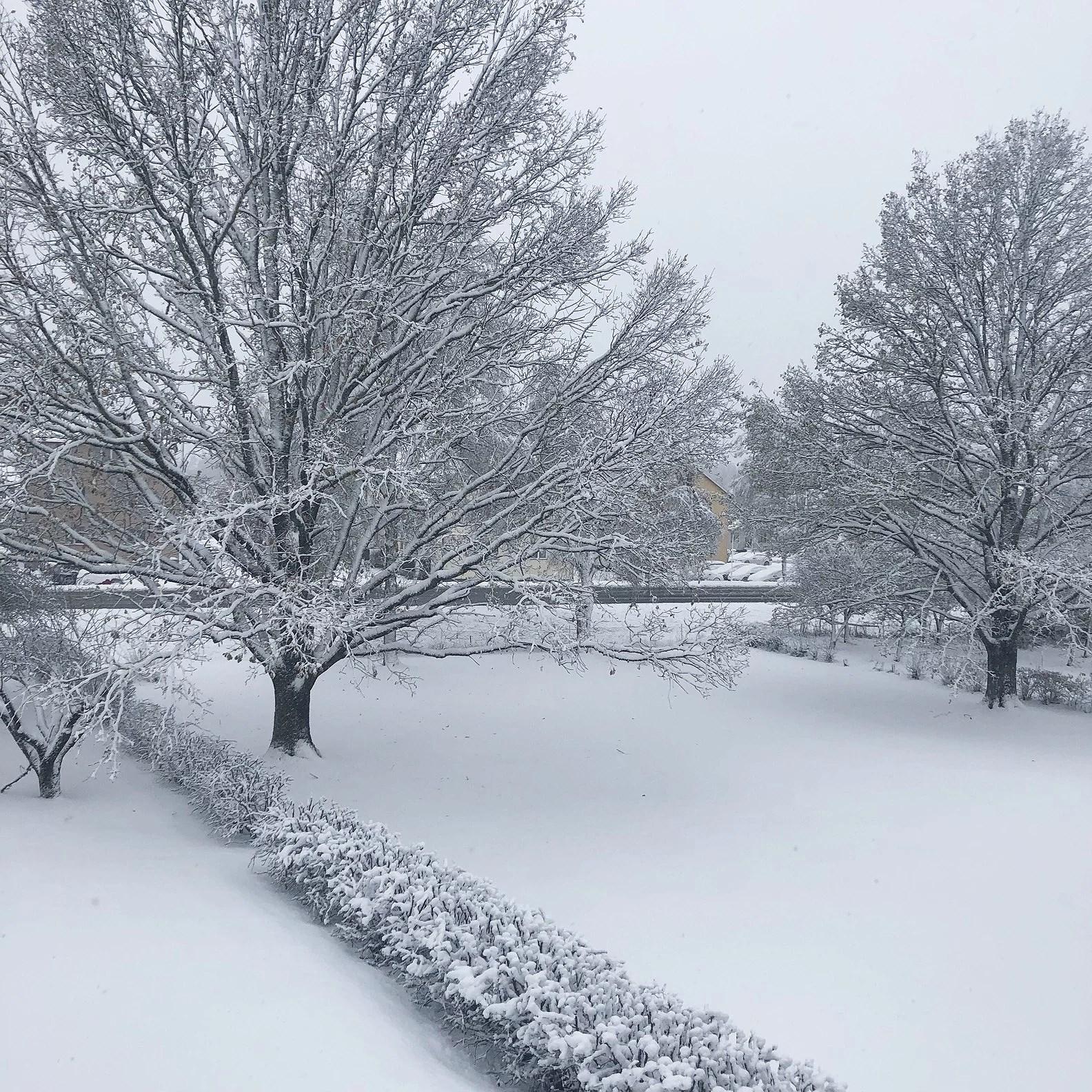 Jag ser det snöa