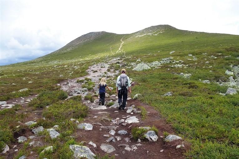 Fjällvandra vandra med barn i Idre Nipefjäll bestig Städjan spetsigt berg format som vulkan.