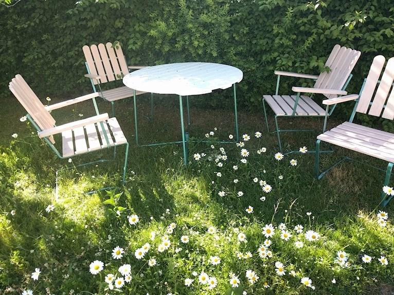 Renoverat grythyttan trädgårdsbord bord retro målat vitt fixat på plats i trädgården bland prästkragar och ännu ej tillfixade stolar.