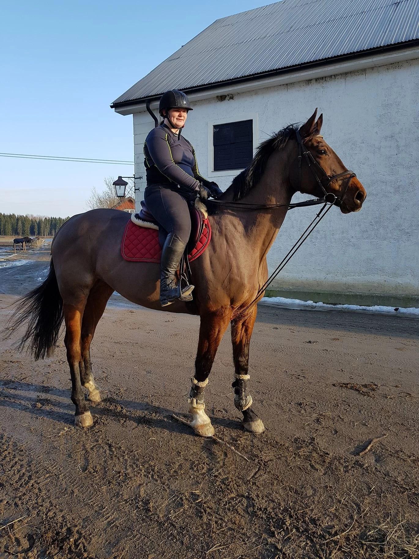 Ridit en häst fast två