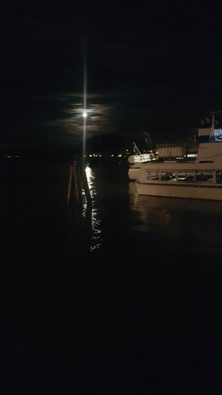 En kväll i hamnen...