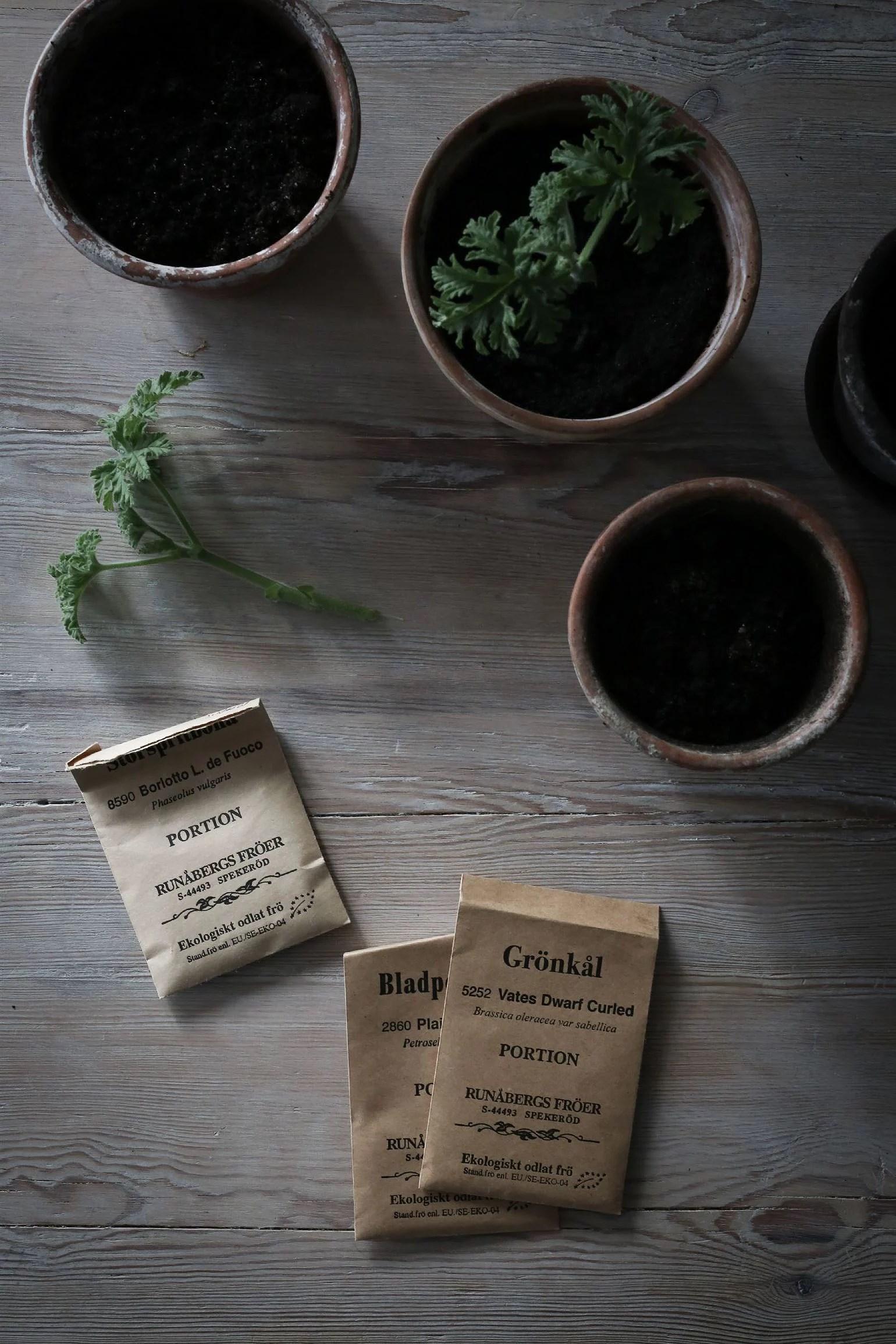 Vårkänslor och planteringar