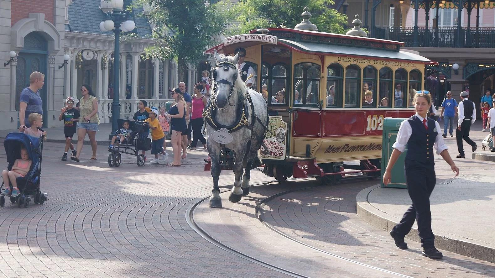 Reseberättelse Sommaren 2017 - Dag 4: Disneyland Paris och semestern går vidare.