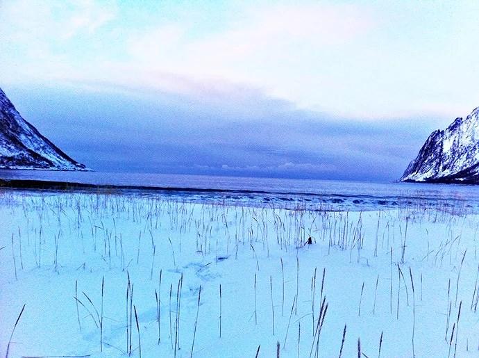 Ersfjord - strand i januar