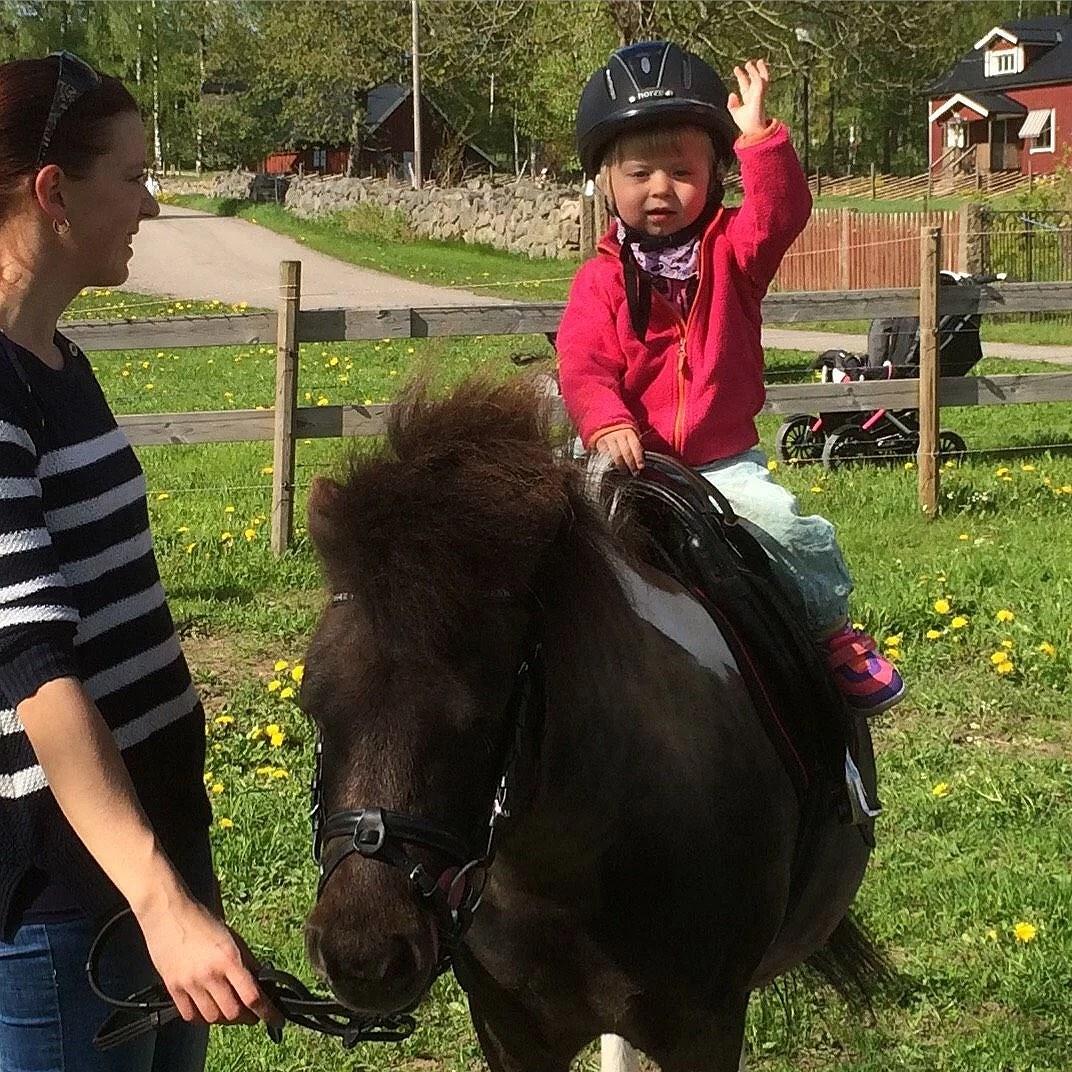 Middag med ponnyridning