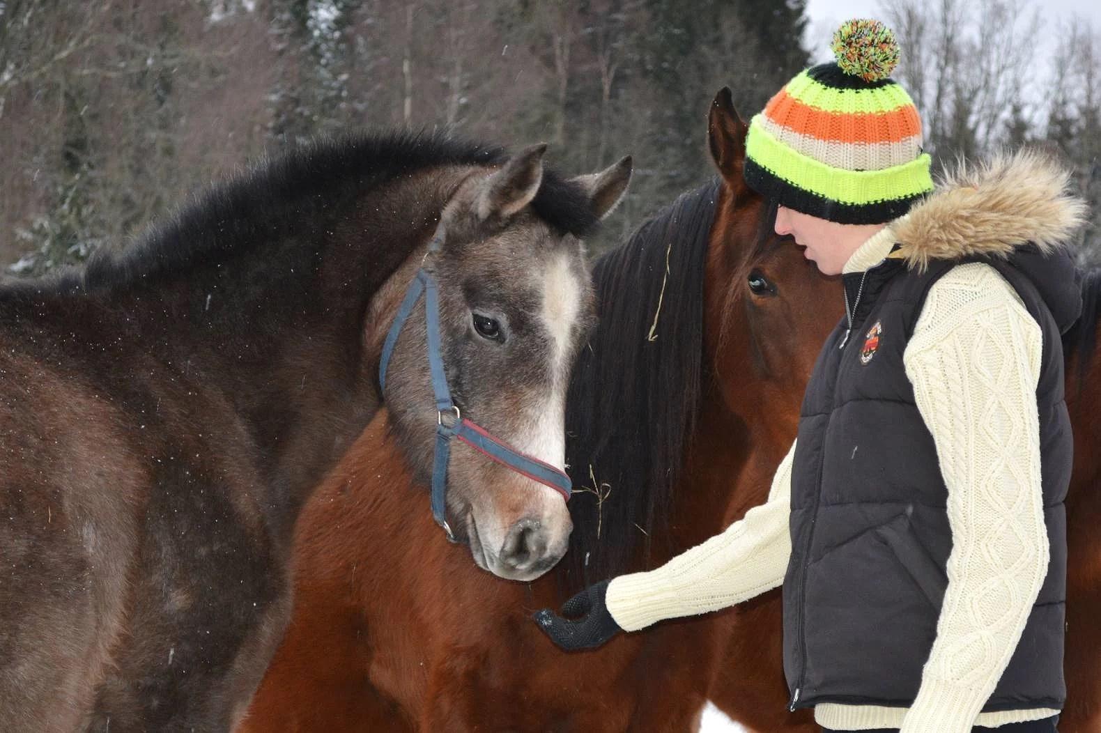 Från bebis till häst