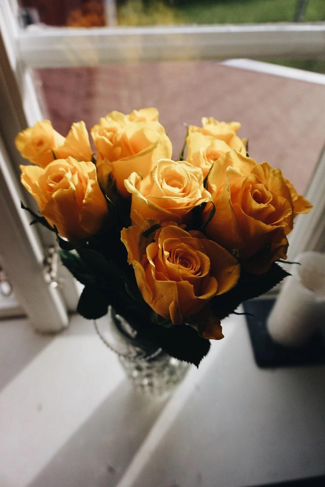 Yellow roses & yesterdays statement
