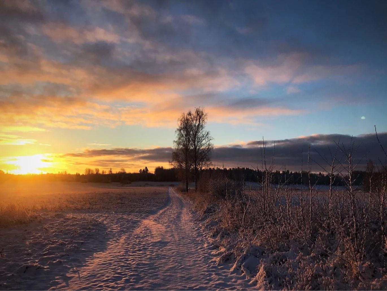 Kärlek, glädje, nervositet och vinter.