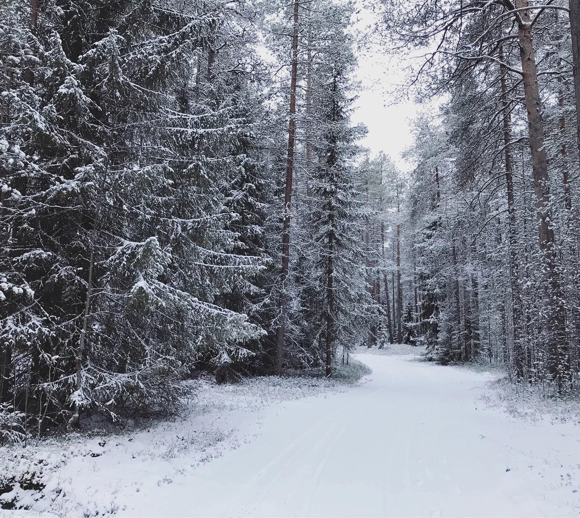 Snö i Norrland