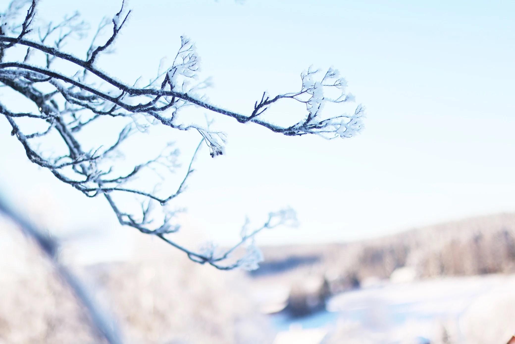 vackra landskap