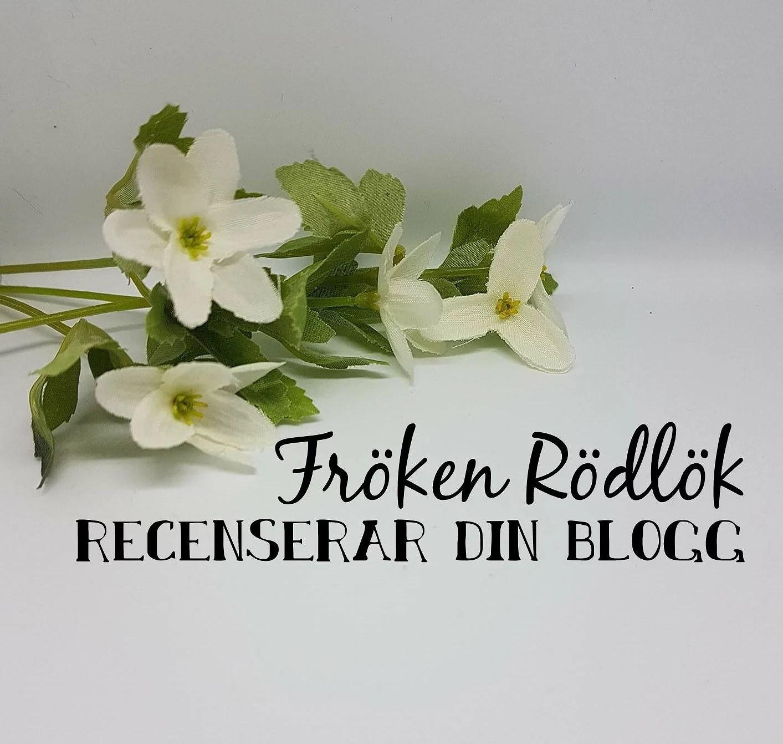 Jag recenserar Rebekkas blogg.