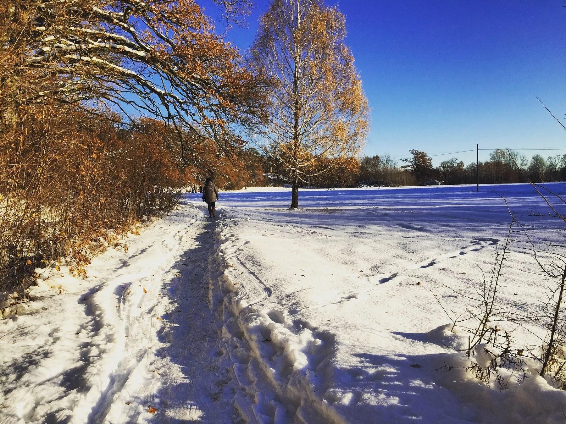 Fint väder