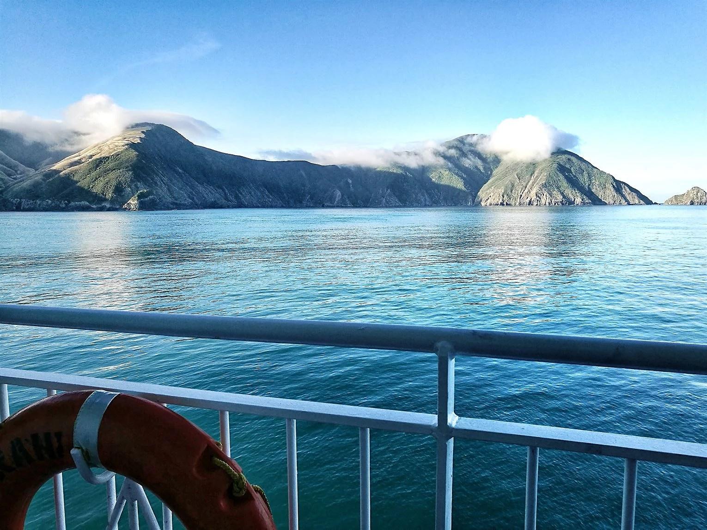 Rejsedagbog #5 Wellington Abel Tasman Franz Josef-og Fox gletsjer