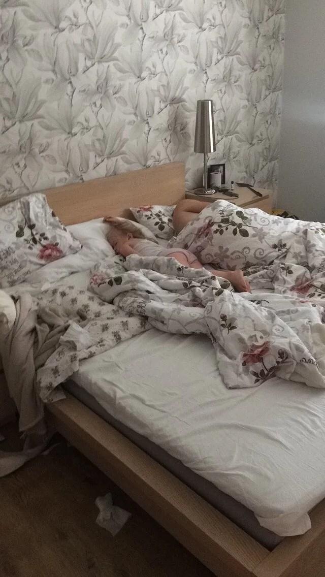 Man väcker inte den björn som sover!