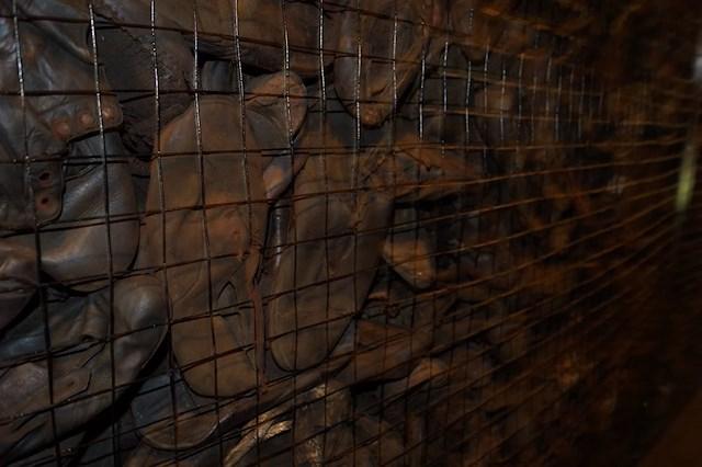 Bildresultat för förintelseläger skor