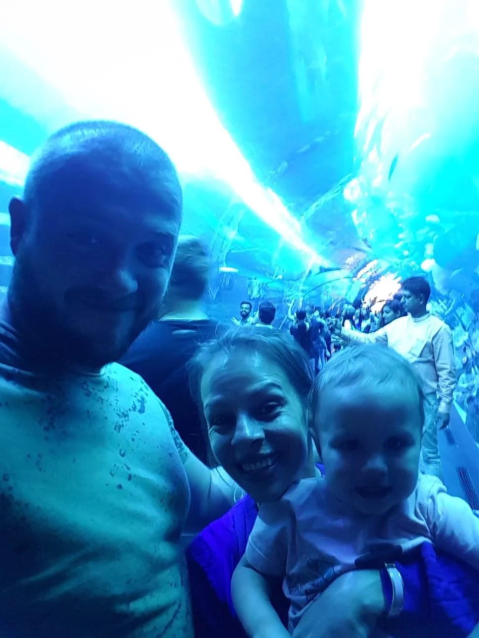 Dubai aquarium & underwater zoo och Burj Khalifa