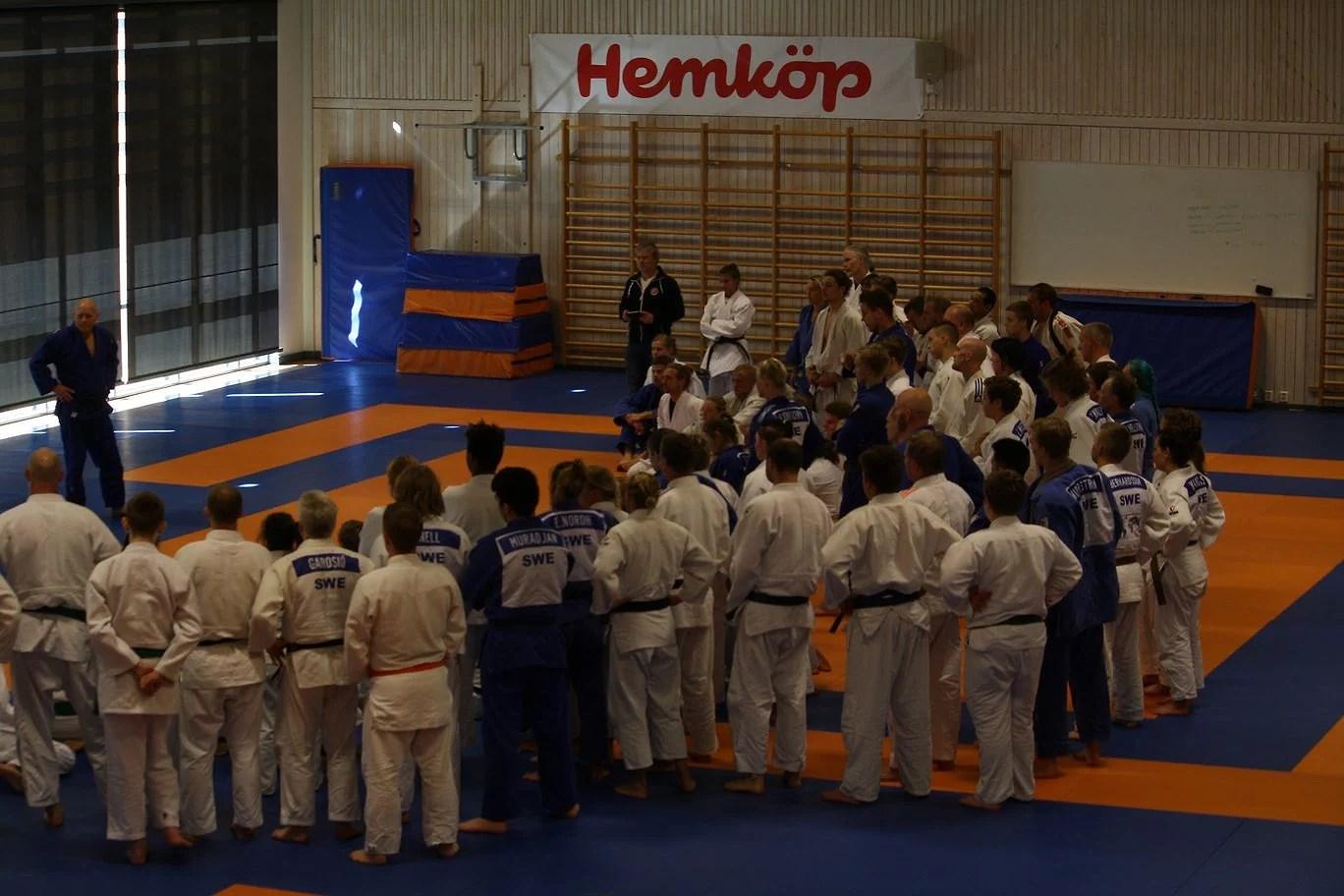Judofestivalen