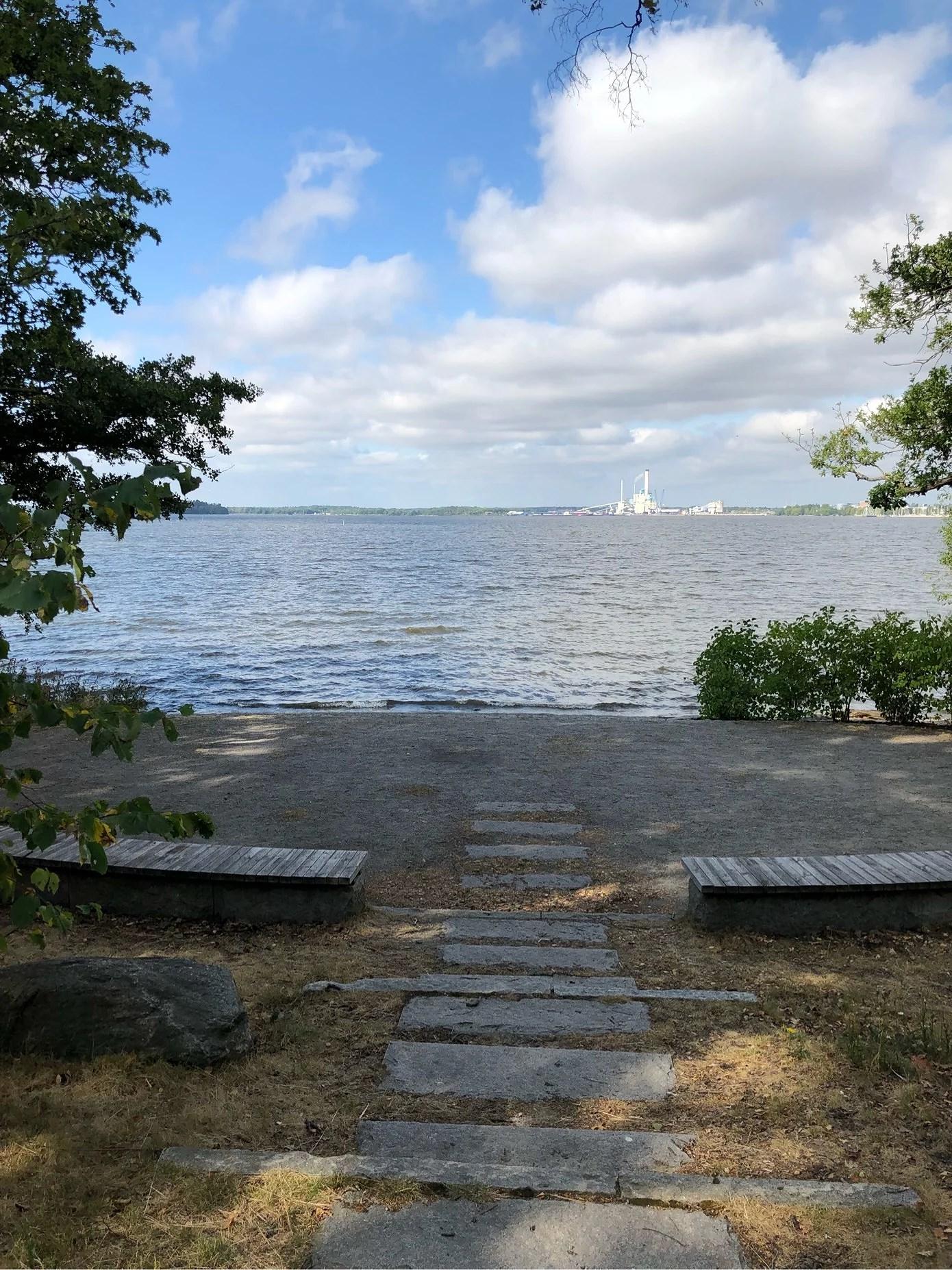 Vlogg om första träningsveckan