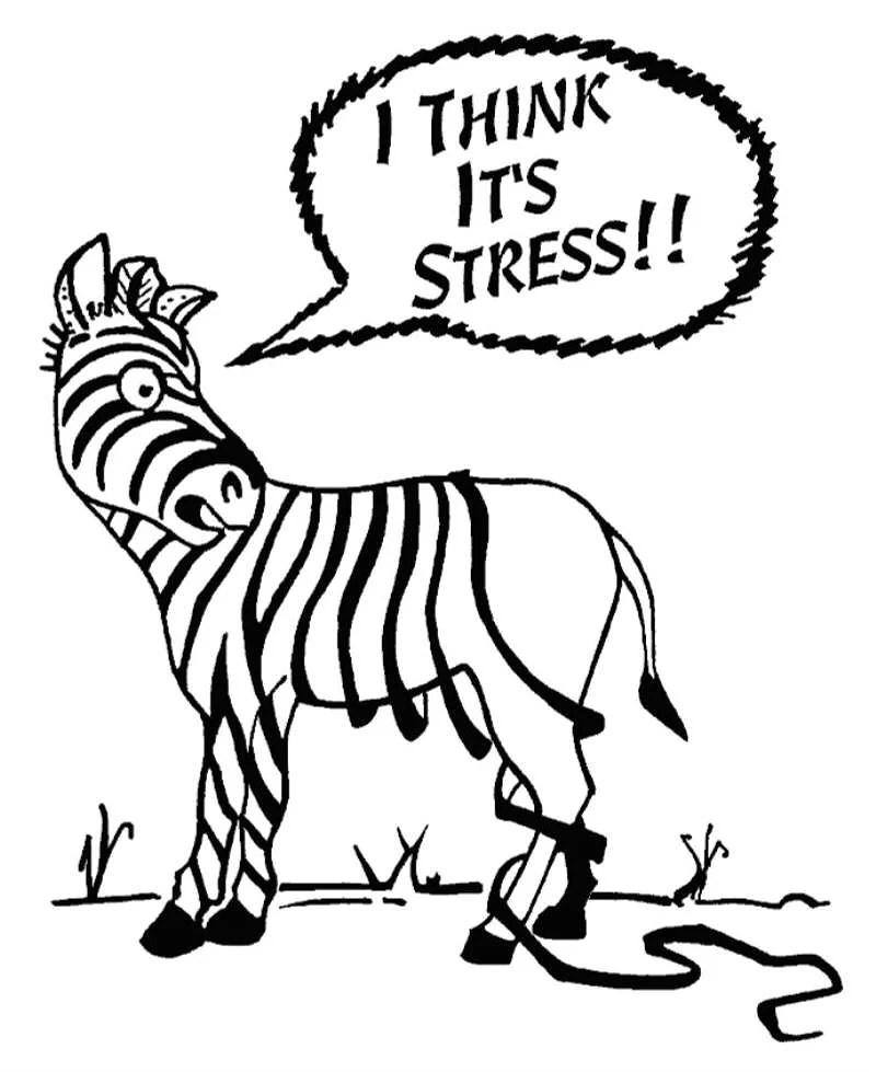 Stress är bara förnamnet