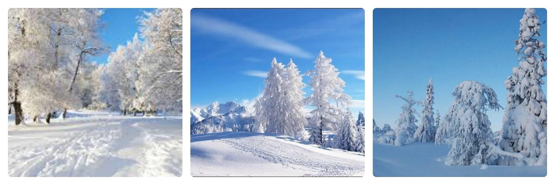 Vinter Inspo