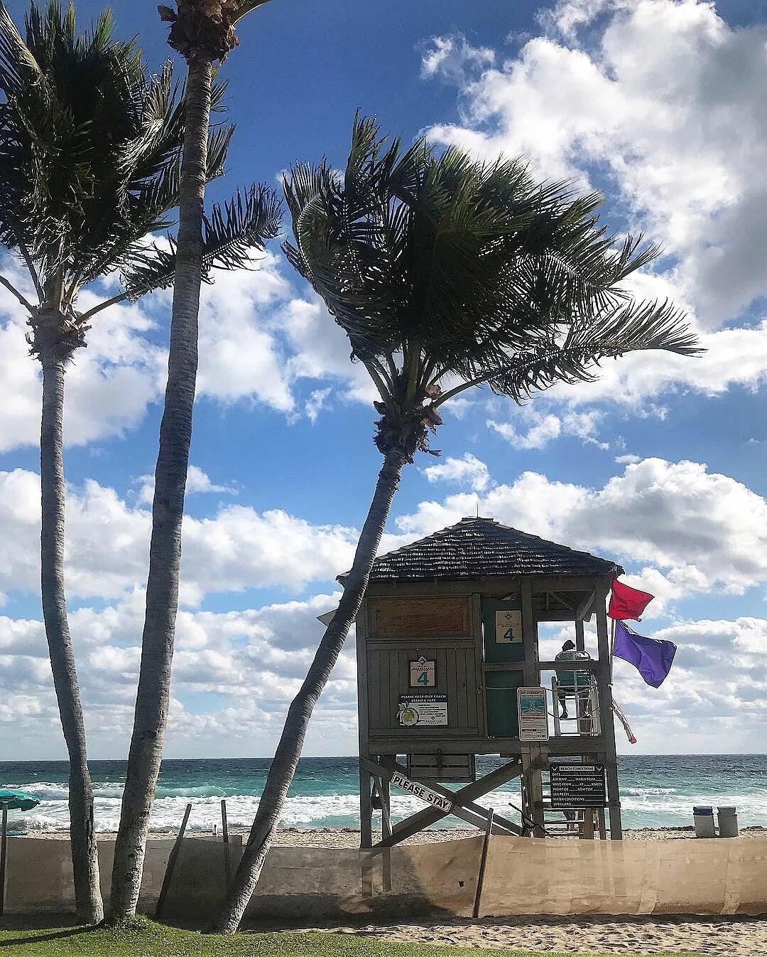 Sista 10 dagarna i Florida