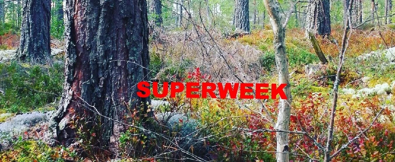 Lite samlade SUPERWEEK kampanjer