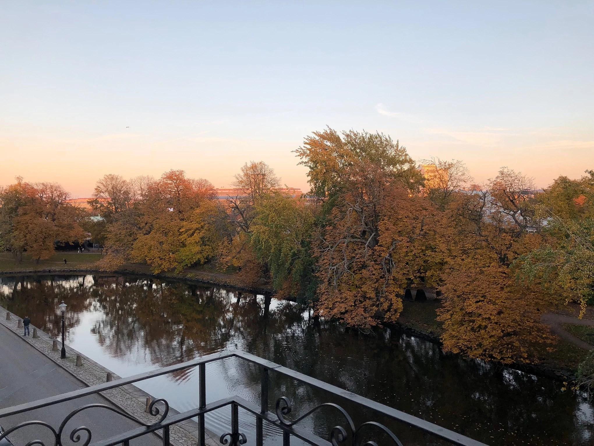 Fina hösten