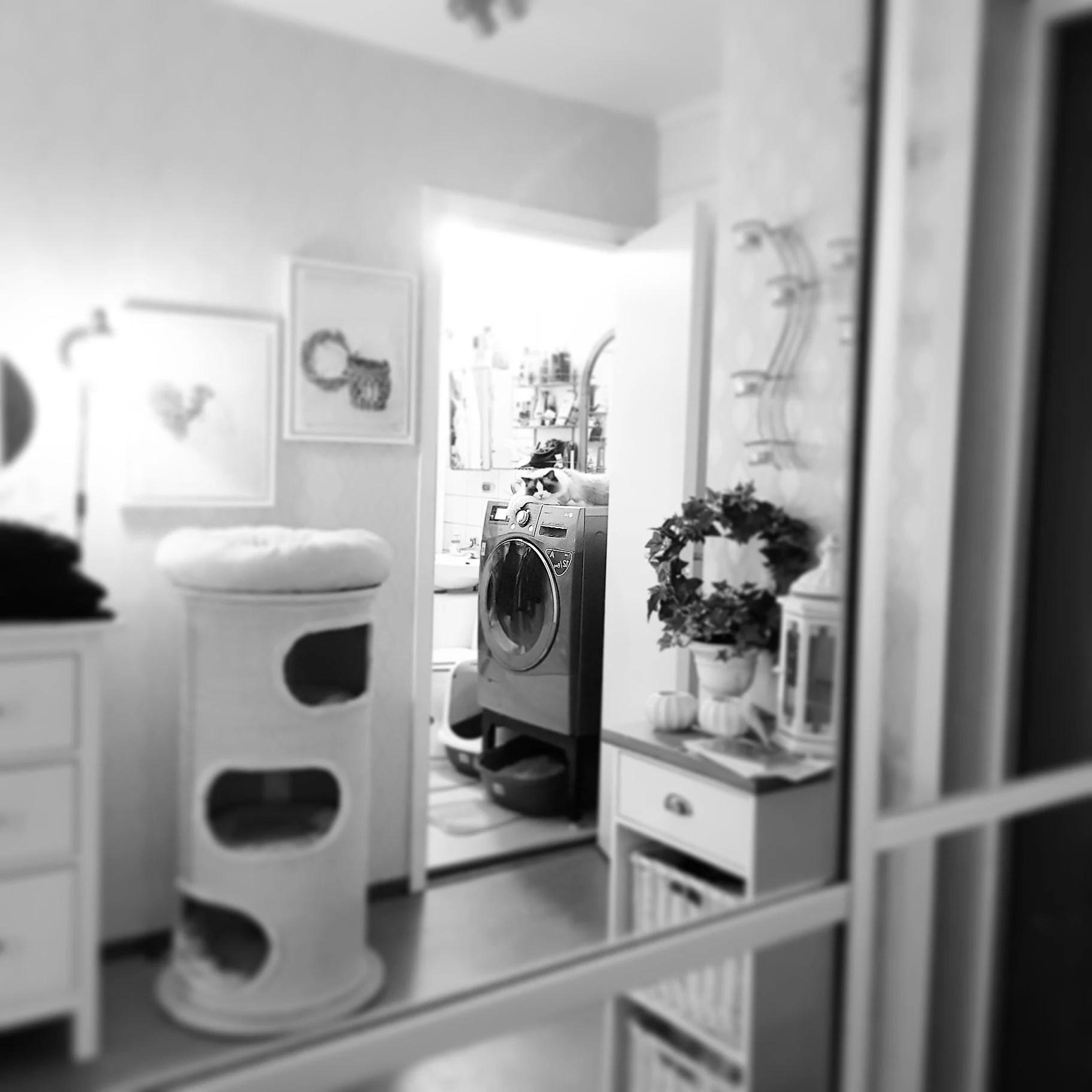 Casper har tagit på sig rollen som tvättmaskins vakt! ;)